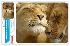Buro BU-M40030 рисунок/лев